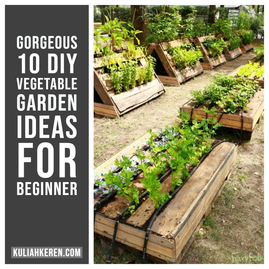 5 Vertical Vegetable Garden Ideas For Beginners: Gorgeous 10 DIY Vegetable Garden Ideas For Beginner (With
