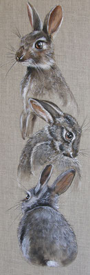 Les Lapins De Garenne Attitudes Peintre Animalier Lapin Art