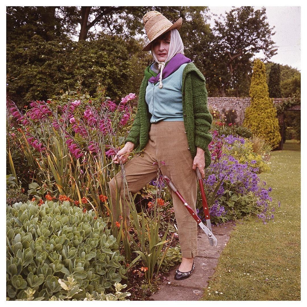 217 Likes, 6 Comments - Pleasure Garden Magazine ...