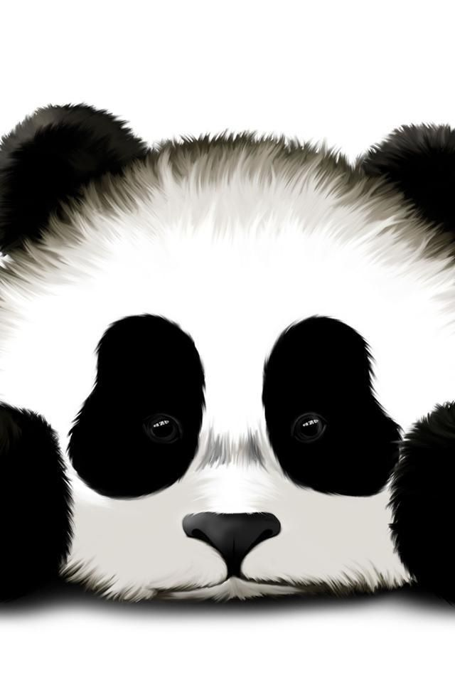 So Cute Panda Wallpaper IphoneIphone