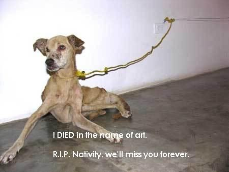 """Ludo S. - """"saving animals from abuse for two reasons: out of love and because we owe them. IN LOVING MEMORY OF BOBBY & TOBY, PATSY, PORKY AND LITTLE B. R.I.P."""" - My Care2"""