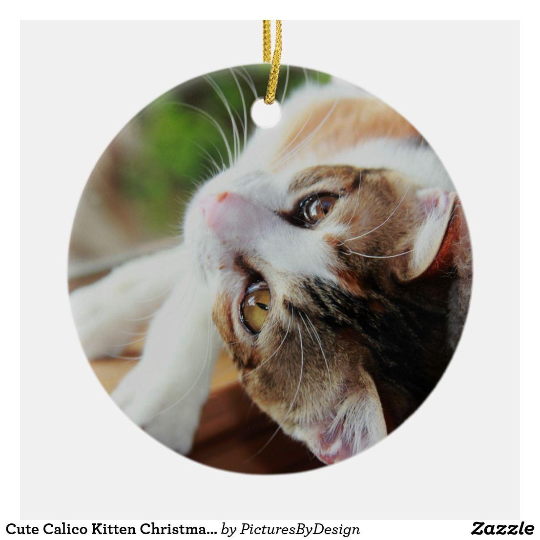 Pin On Christmas Cats