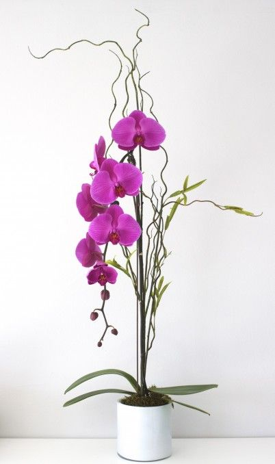 Pink Orchid By La Orchidia Pink Orchids Orchids Flower Delivery