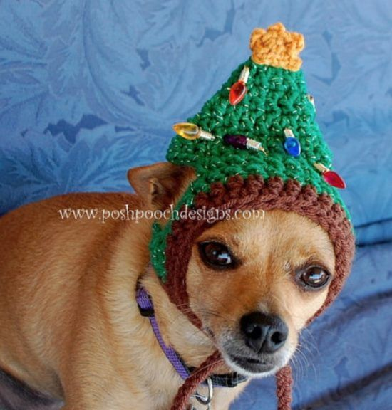 Crochet Dog Hat Pattern Ideas Best Collection | Pinterest