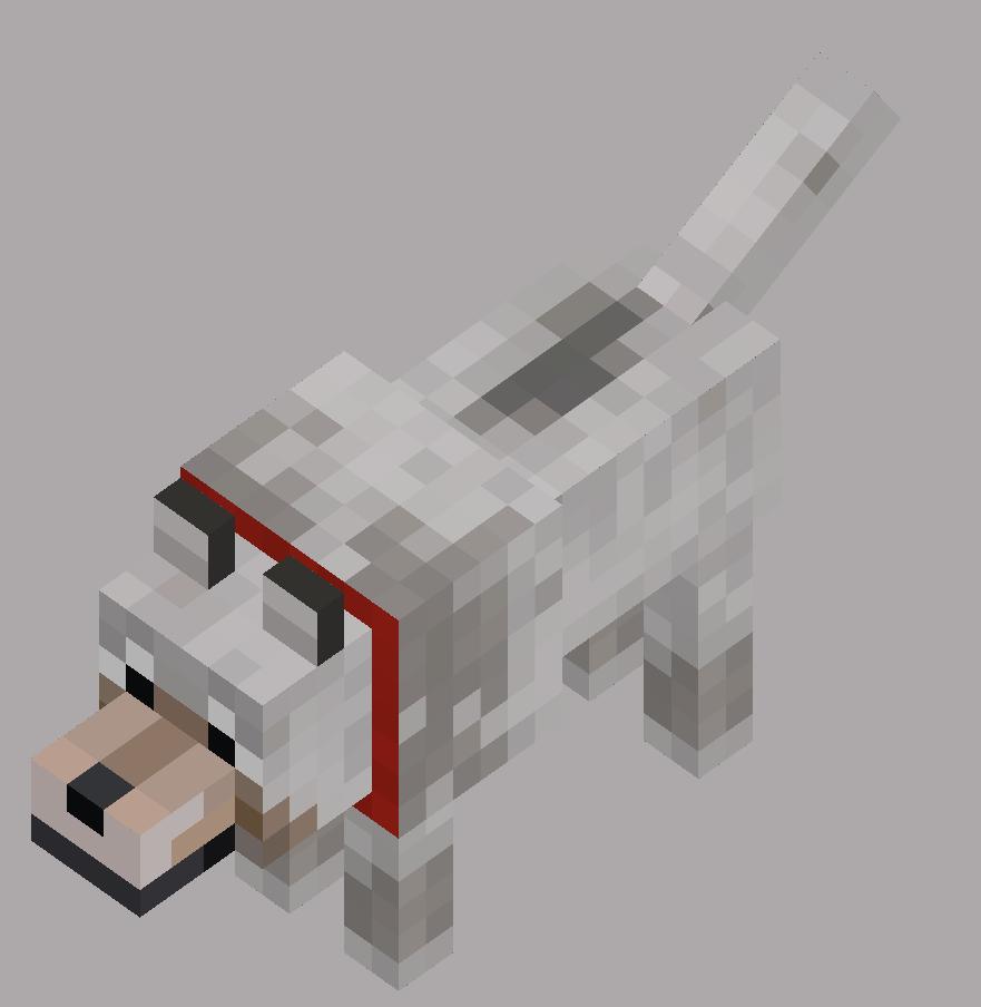 Wolf/Dog  Imagens minecraft, Minecraft personagens, Minecraft