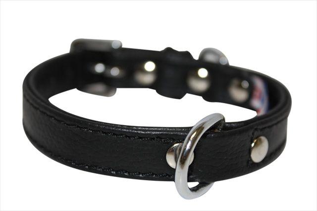 Angel Pet Supplies Alpine Plain Dog #Collar in Midnight Black