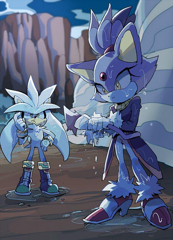 Silver and blaze jeux vid o personnages de jeu vid o nintendo et dessin anim - Dessin anime sonic ...