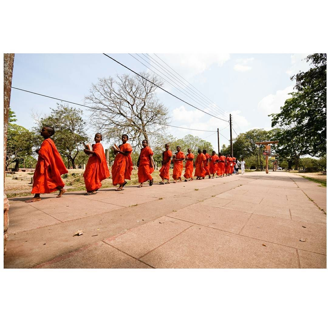 'The difference between a master and a beginner is that a master has failed more times then the beginner has even tried.' #worldtrip #travelphotography #northsrilanka #srilanka #exploresrilanka #monks #visitsrilanka #traditional #buddhism by meetyouatthebridge_nl