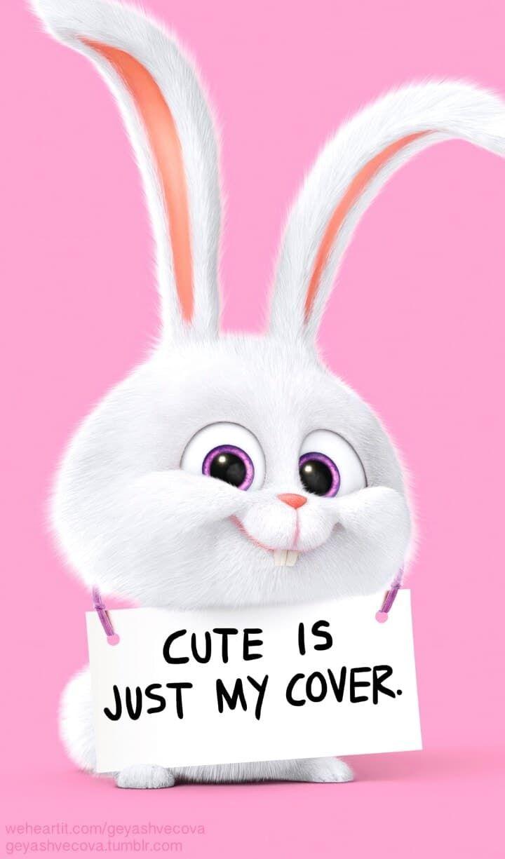 animals, art, baby, background, beautiful, beauty, blue, bunny, cartoon, colorful, cute art, cute illustration, drawing, fashion, fashionable, illustration, inspiration, kawaii, luxury, pretty, rabbit, snowball, wallpaper