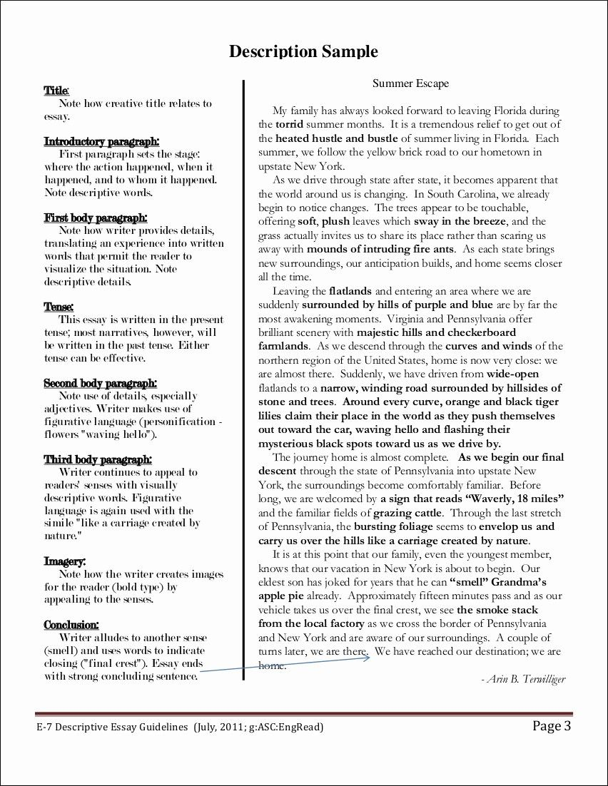 30 Descriptive Narrative Essay Example Murilloelfruto Introductory Paragraph Of Description About Yourself A Person