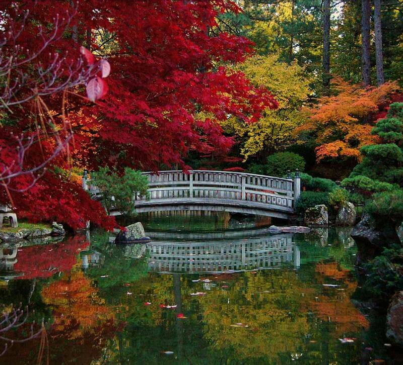 Washington State USA Japanese garden, Scenic views
