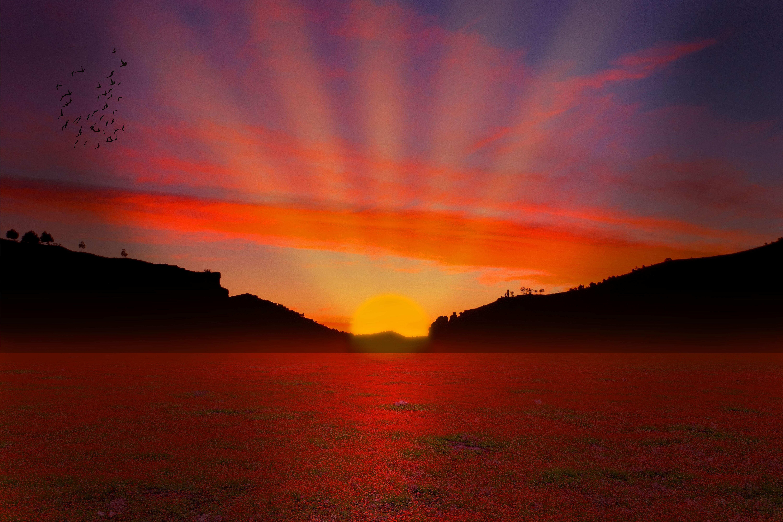 Field At Sunrise Computer Wallpapers Desktop Backgrounds Summer Sunset Sunset Background Sunset Wallpaper