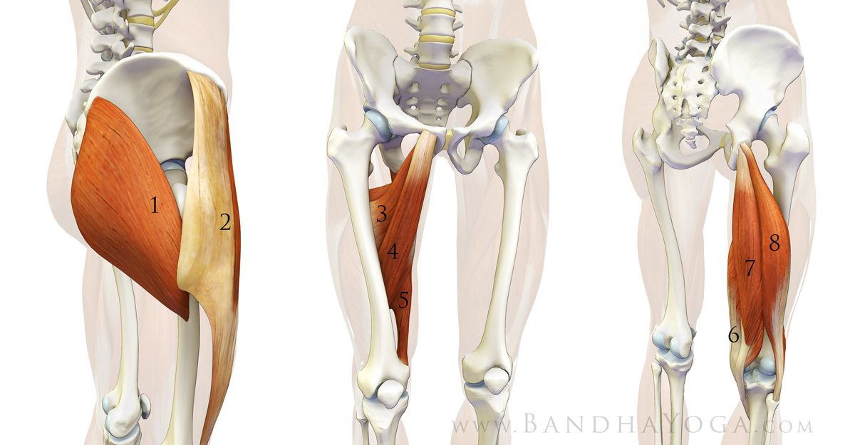 The Daily Bandha: Preventing Yoga Injuries vs Preventing Yoga, Part ...