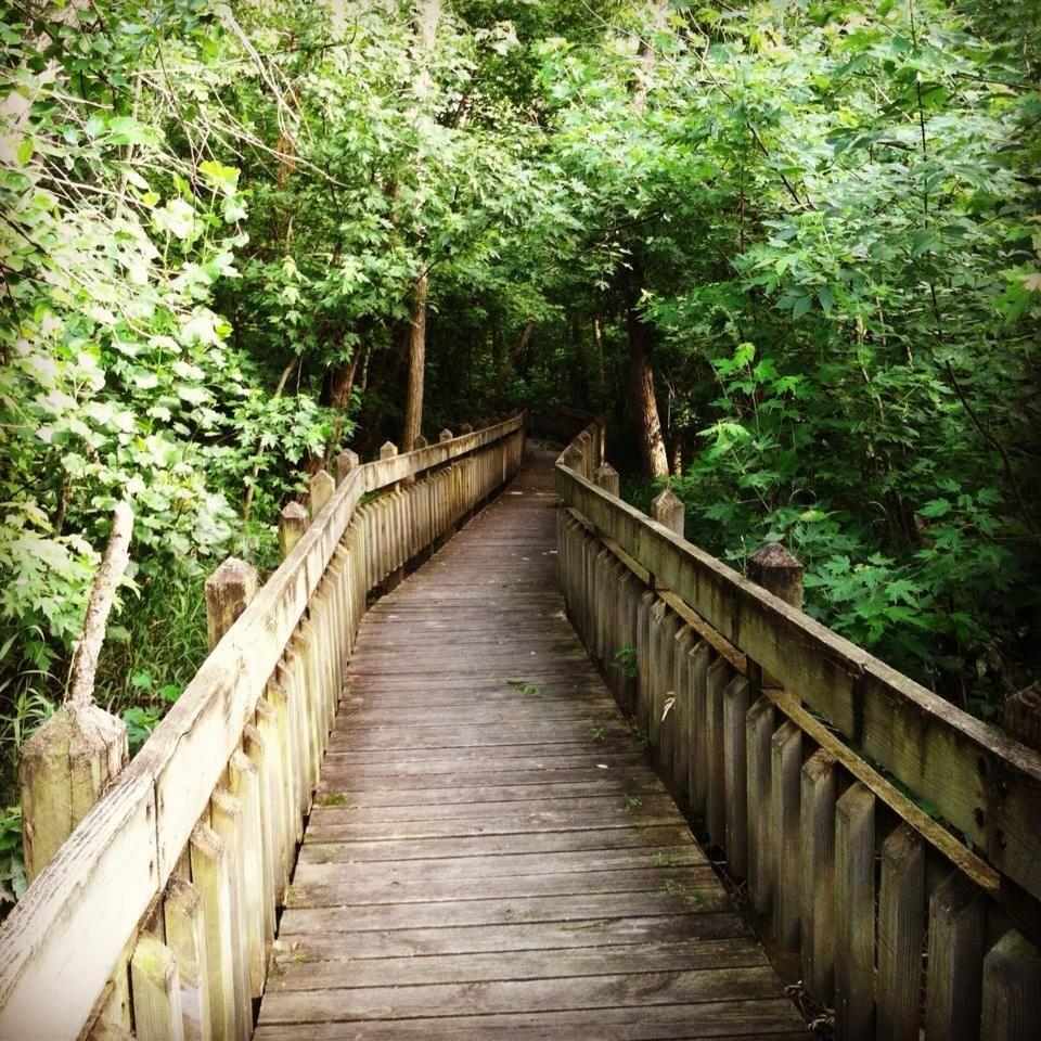 A Walk On The Boardwalk, Pershing Park, Brookfield