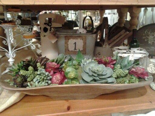 Dough Bowl Decorating Ideas Dough Bowl Succulent  Some Of My Succulent Arrangements