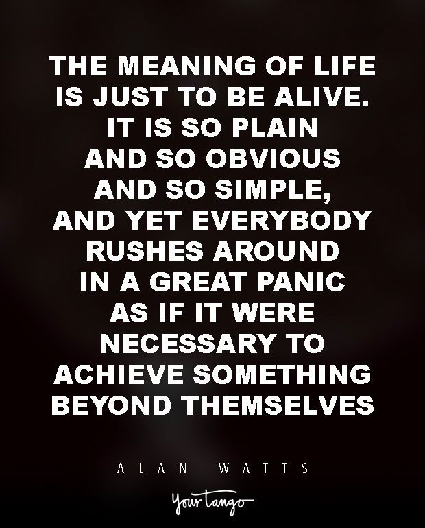 Philosophers Quotes On The Meaning Of Life Cool 15 Powerful Alan Watts Quotes Will Make You Rethink Your Entire