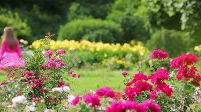 Three Little Sitting Girls In Lush Skirts Talk Near Flowerbeds In ...