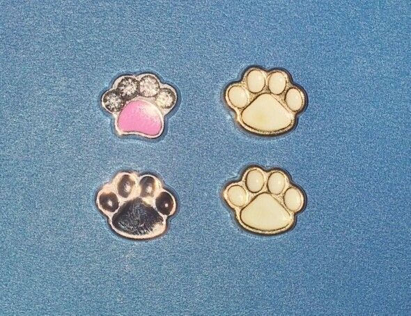 Various Paw Print Charms