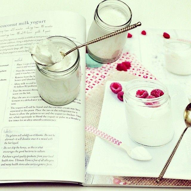 Coconut milk yogurt by @Against All Grain (Danielle) #aagcookbook #mycookingaag #dairyfree #sugarfree #paleo #Padgram
