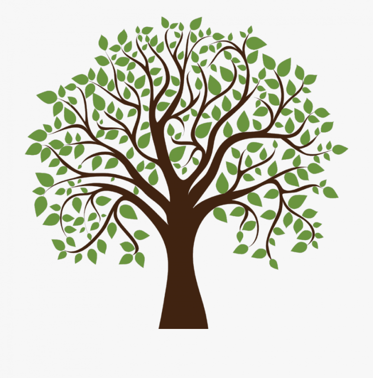 87 877484 Family Tree Clipart Transparent Background Lewes Family Tree Clipart Tree Clipart Family Tree Background
