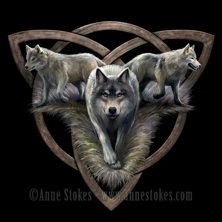 Pin By Tonda Rose On Wolves Loup Loup Dessin Images Loup