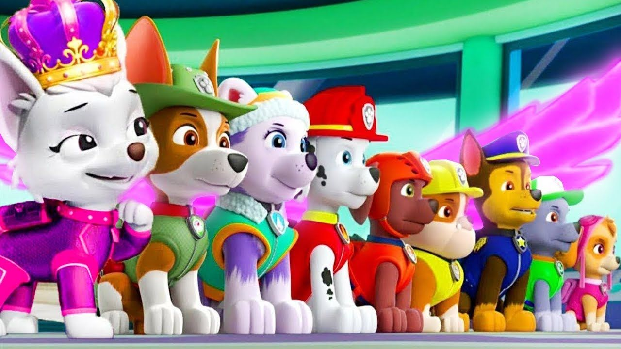 paw patrol on a roll mission mighty pups ryder  fun best