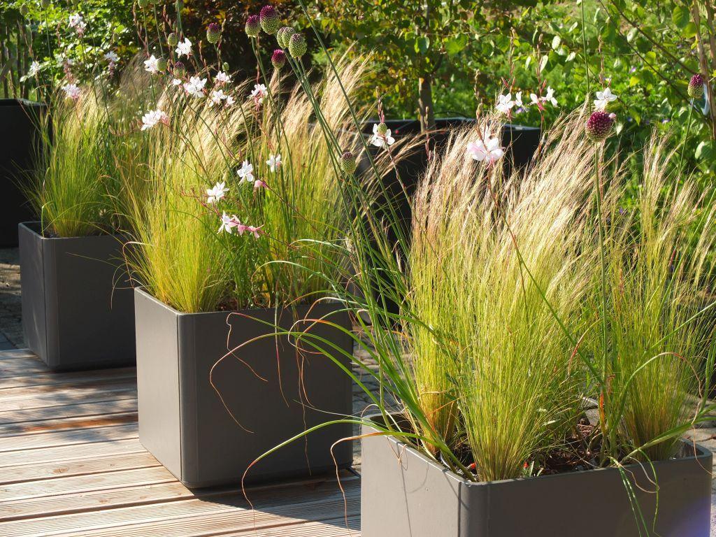 Bildergebnis für urban gardening balkon | Contained Gardens ...