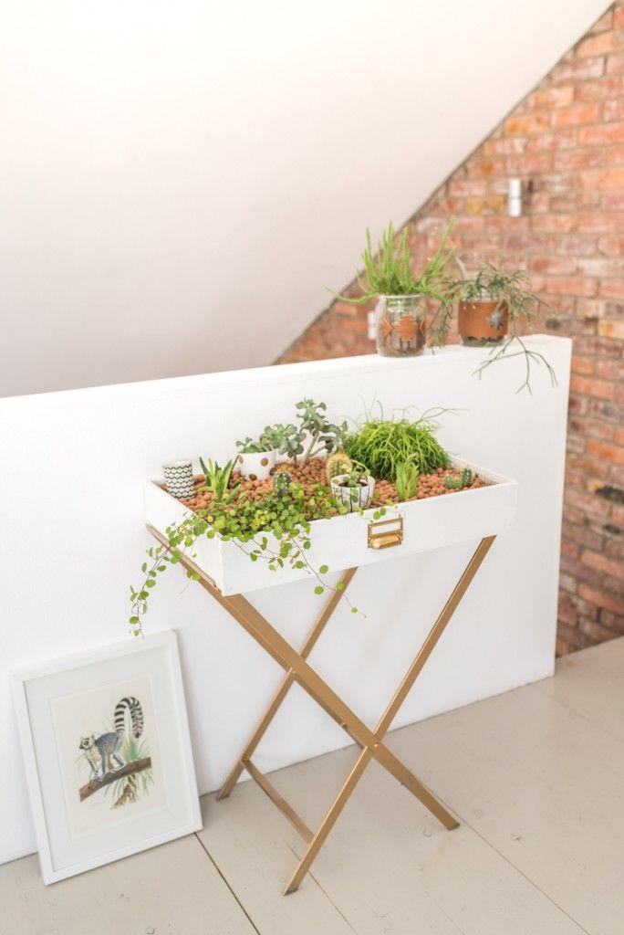 Indoor Garten diy mein kleiner indoor garten upcycling diys and diy interior