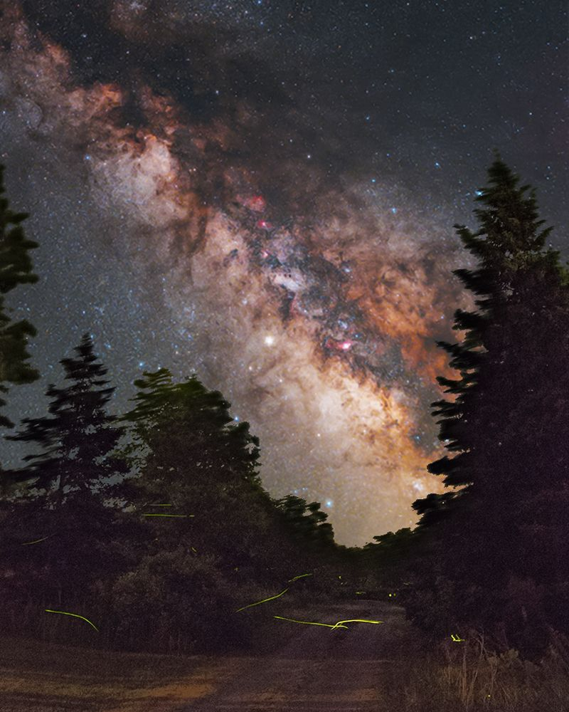 How To Photograph The Milky Way With Images Milky Way Photography
