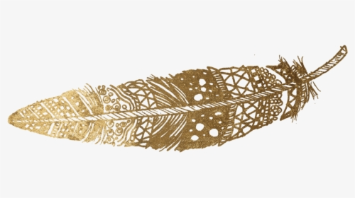 Transparent Gold Feather Png Transparent Png Feathers No Background Png Download Feather Gold Feathers Transparent