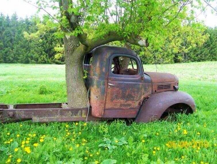 Classic Cars Forgotten On Farm Up For Sale