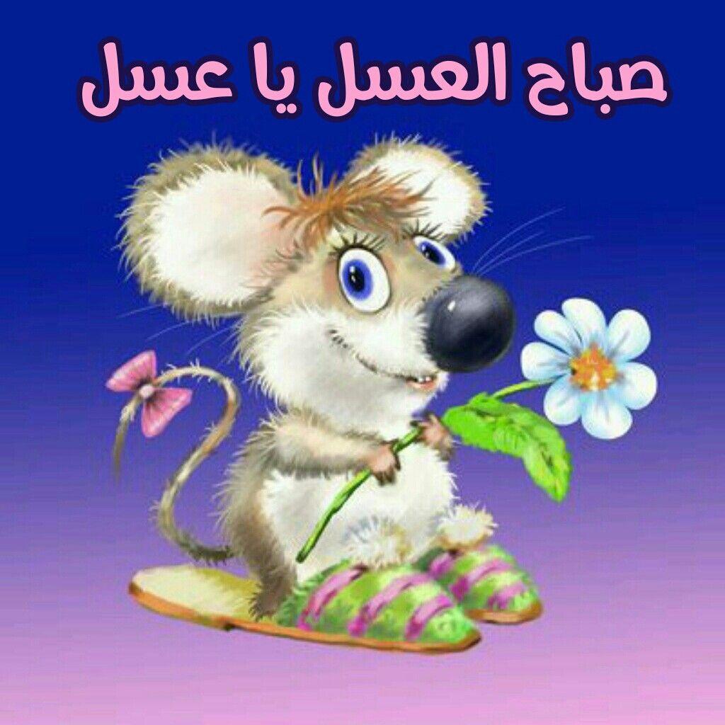 صباح العسل يا عسل Animals Cute Baby Animals Pet Mice