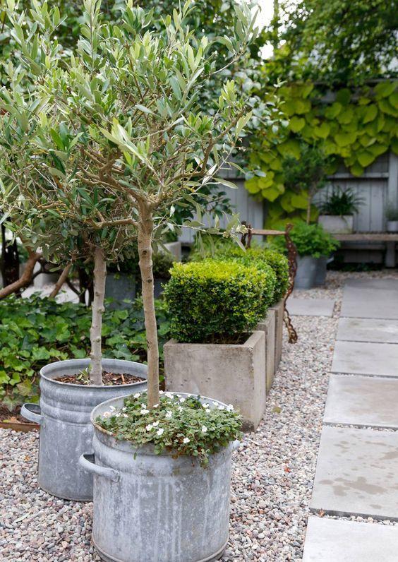 Photo of Polepšajte teraso in vrt s cvetličnimi lonci