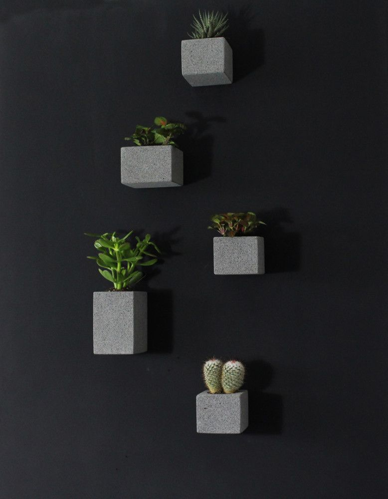 Set Of 5 Wall Hanging Planters Create Your Own Piece Of Green