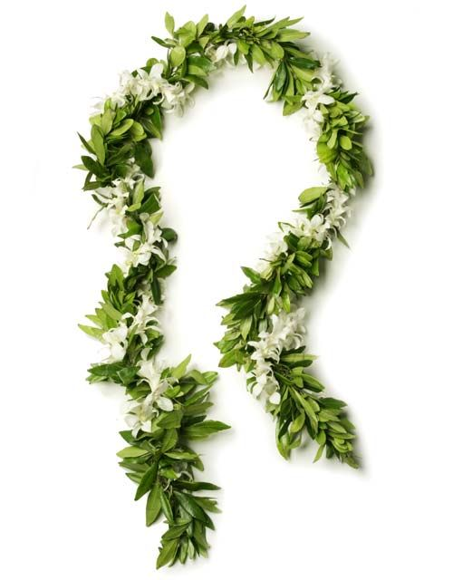 Hawaiian Leis For Men : hawaiian, Fresh, Hawaiian, Orchid, Loose, Blooms, Wedding