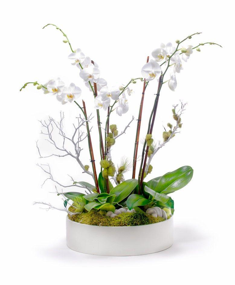 Orchid arrangement hotel deko orchideen blumen und deko blumen - Orchideen arrangement ...