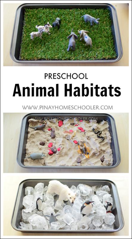Preschool Animal Habitats using Sensorial Materials ...