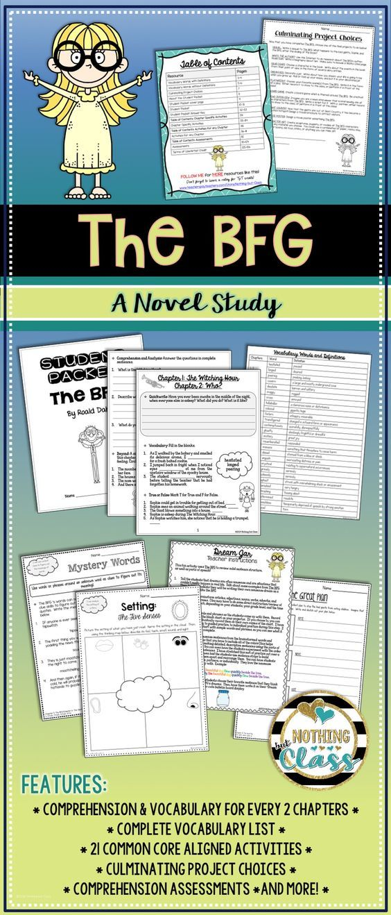 The BFG Novel Study Unit Comprehension Vocabulary
