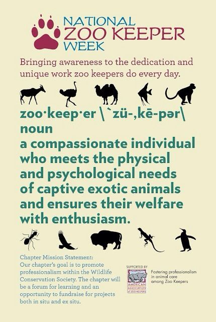 Pin By Maria Tomai On Zoology Zoo Keeper Work With Animals Animal Facts Interesting