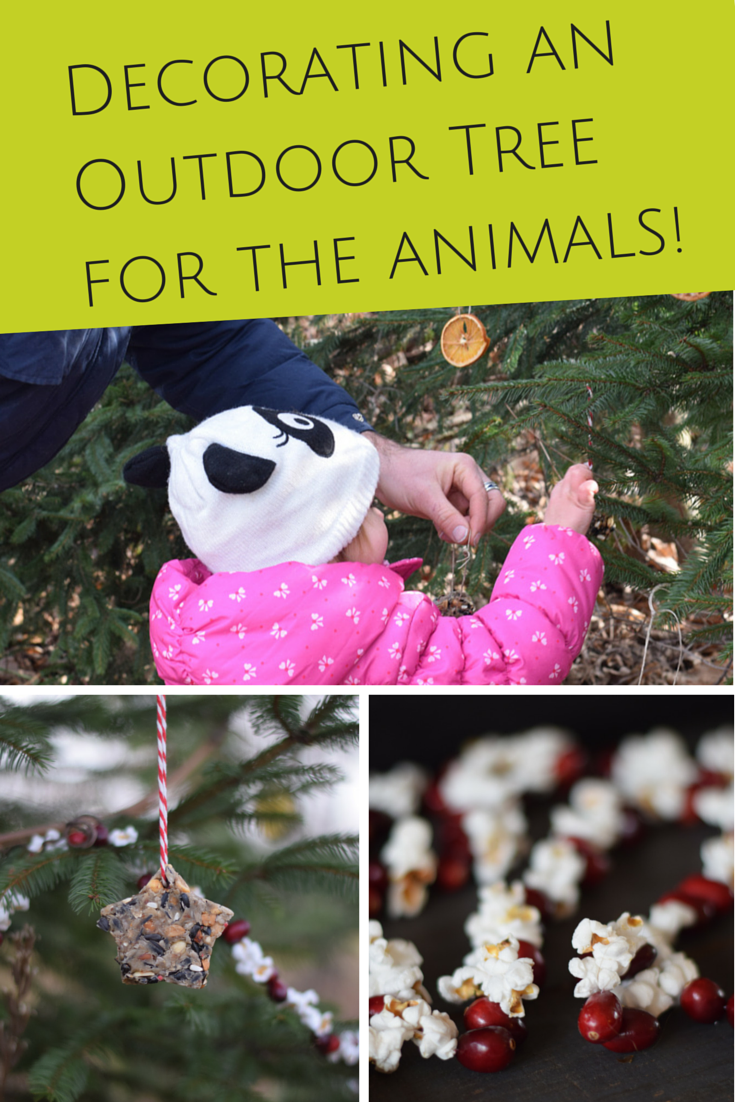 How To Decorate An Outdoor Edible Holiday Tree For The Animals A
