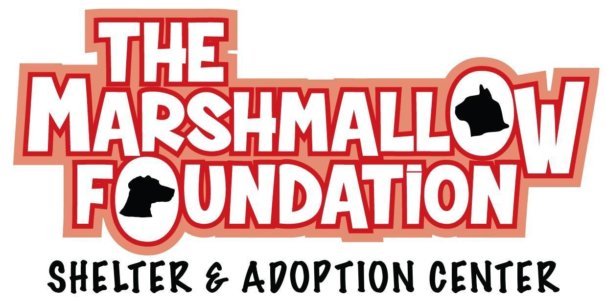 Get to know the marshmallow foundation saving lives