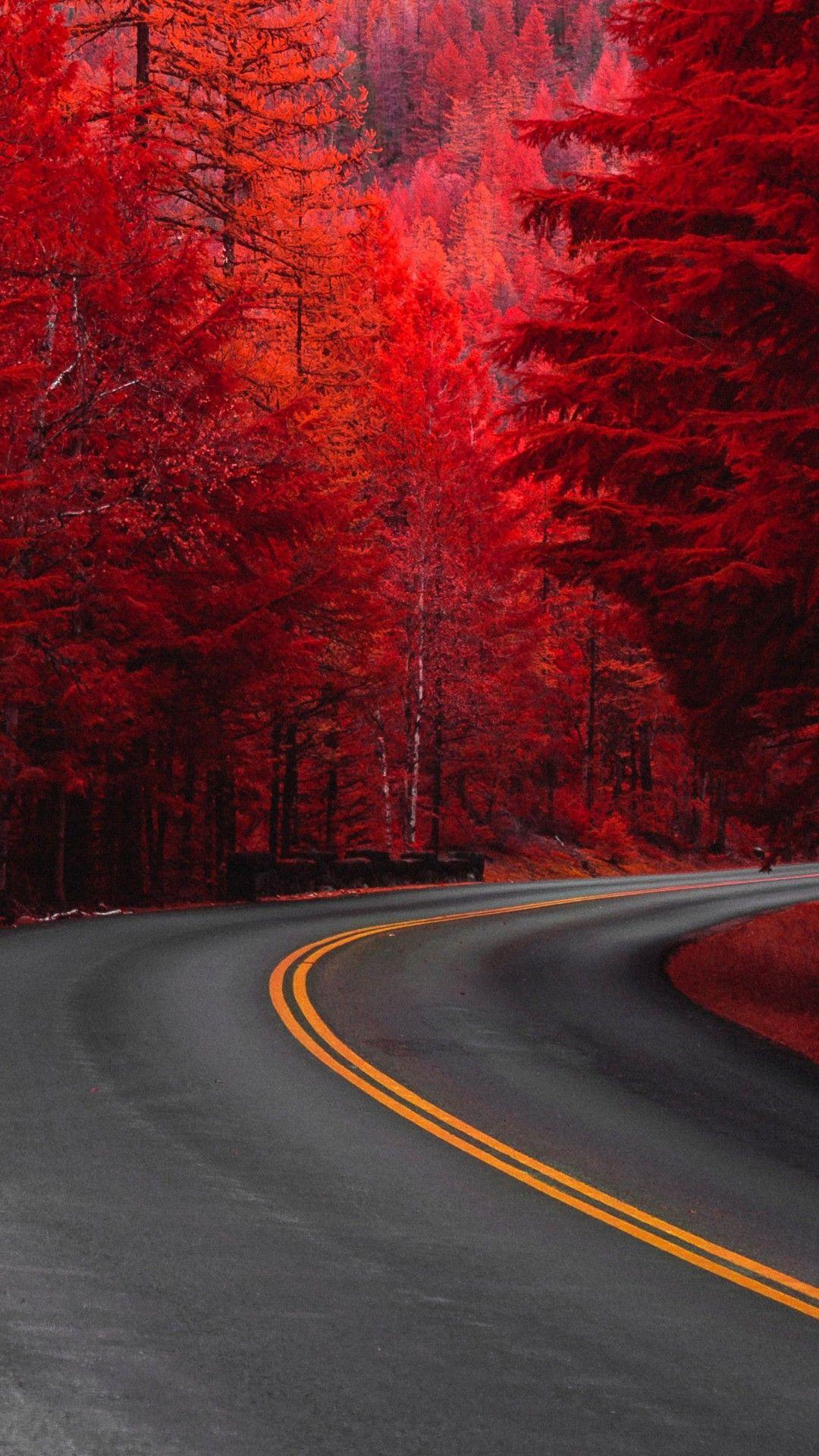 Nature Road Wallpaper Beautiful Nature Wallpaper Nature Wallpaper Fall Wallpaper