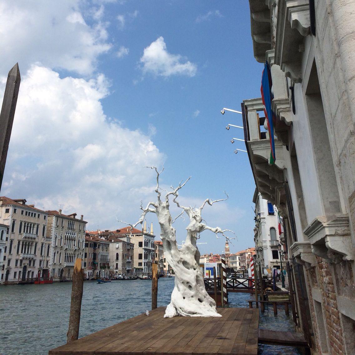 Venice Biennale art