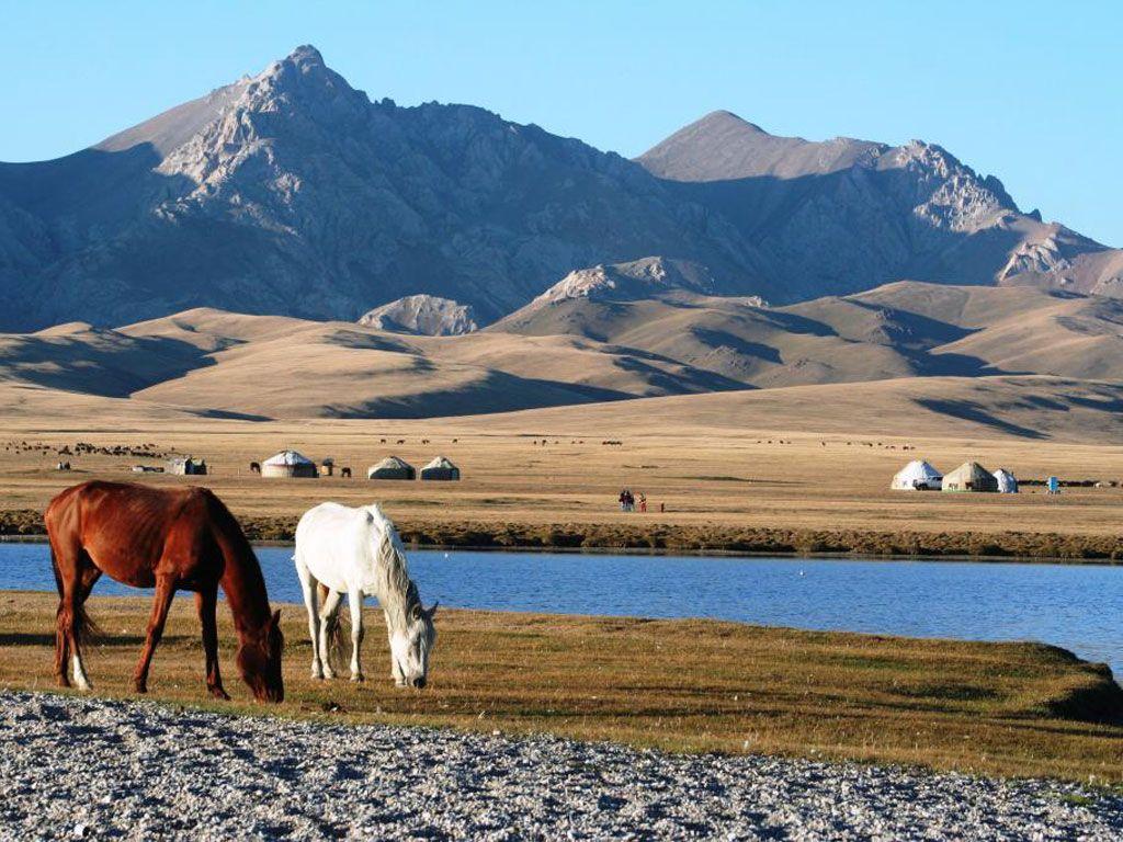 Kirghizistan Vous Int Eacute Resse Sur Le Site Du Magazine Geo D Eacute Couvrez Les Diaporamas Photos T Eacute L Eacute Beau Paysage Voyage Guide De Voyage