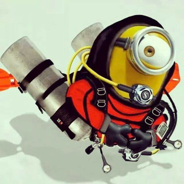 Image result for scuba minion