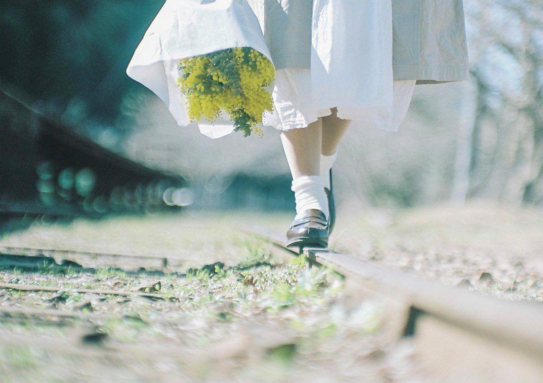 "@ka_na_05 on Instagram: ""・ ・ ・ 明日をきっと照らしてくれる、 ・ ・ model @pu_ka725 ・ ・ ・ #カノプリ ・ #film #film_jp #フィルムに恋してる ・ #フィルム写真普及委員会 ・ #hibi_jp #train #その瞬間に物語を ・ #pof_ig…"""