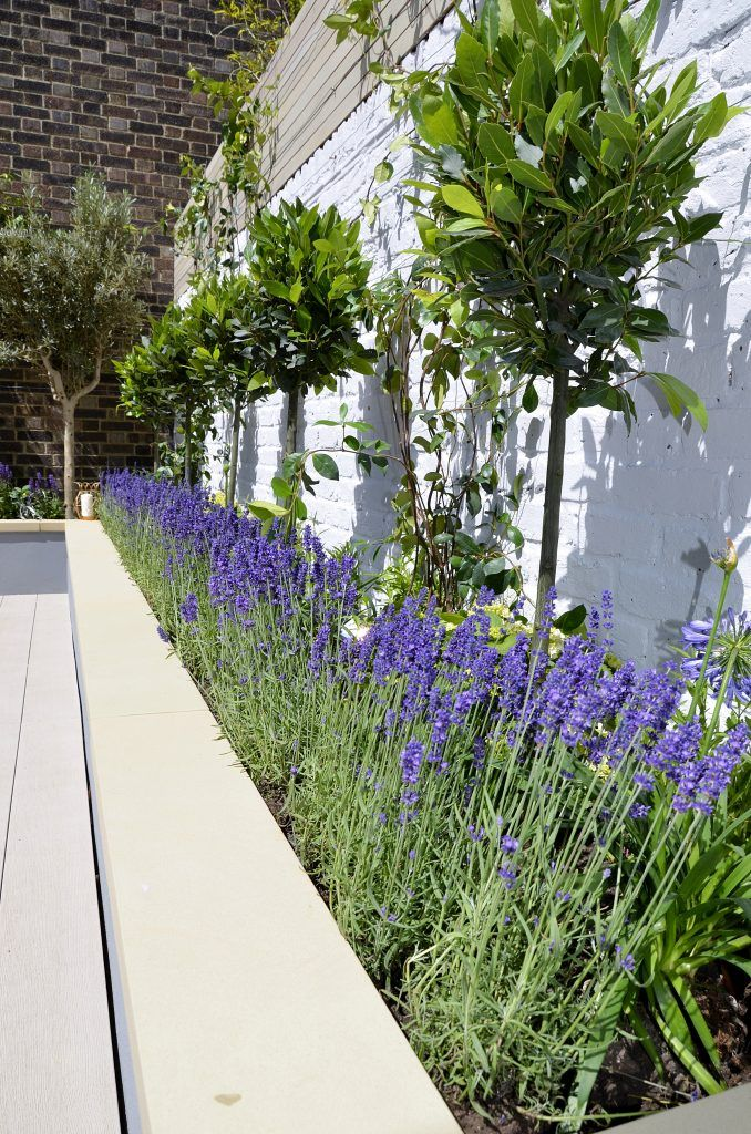 Raised beds painted grey composite limed decking bench ...