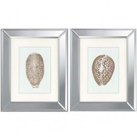Shells I Set Of 2 Print Silver Paragon 1215 Framed Wall Art Sets Wall Art Sets Framed Wall Art