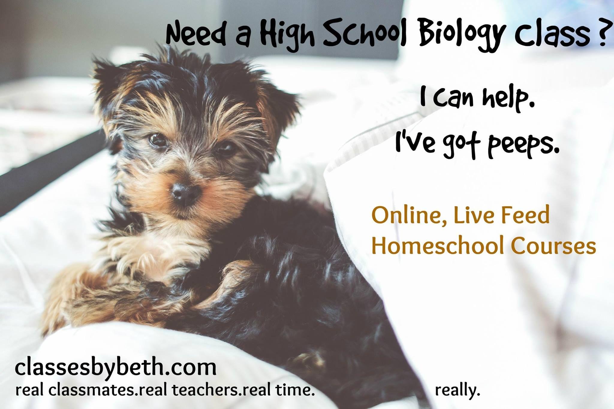 High School Biology Pets, Organic pet products, Pet