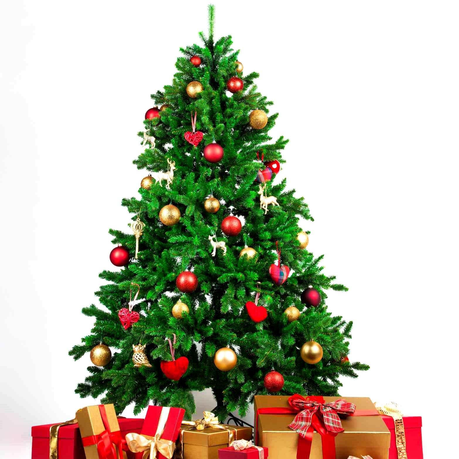 Buy A Christmas Tree Near Me Gallery di 2020